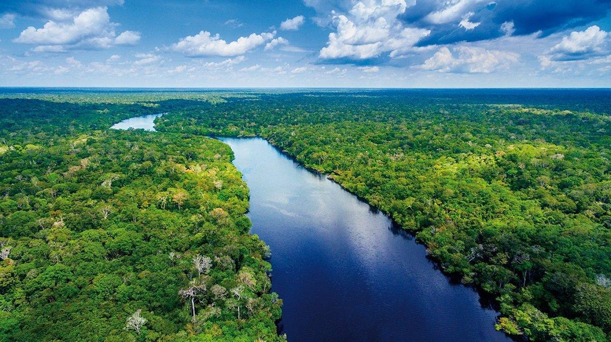 Amazon meşələri planeti CO2 ilə zəhərləməyə başlayıblar