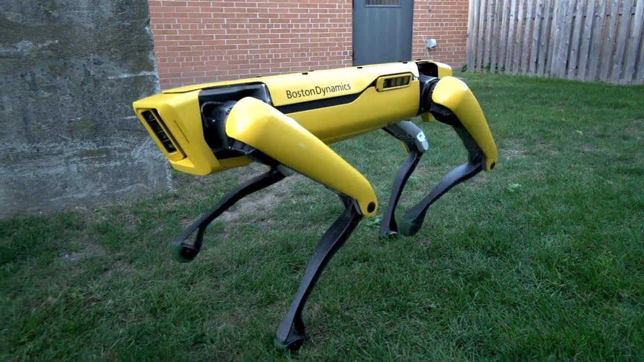 'Boston Dynamics' şirkəti yeni robotunu təqdim etdi (VİDEO)