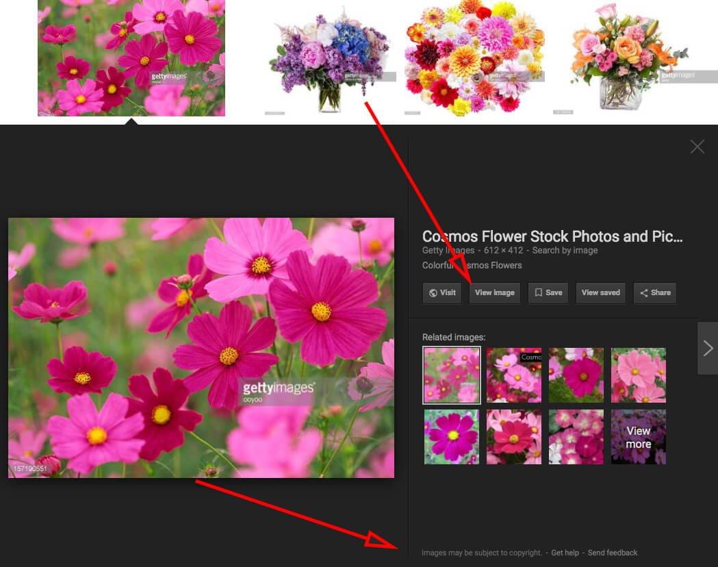 Google-da 'View Image' düyməsi deaktiv edildi