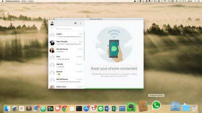 whatsapp, whatsapp windows, whatsapp macos, whatsapp desktop, whatsapp desktop call, whatsapp desktop audio call, whatsapp desktop video call