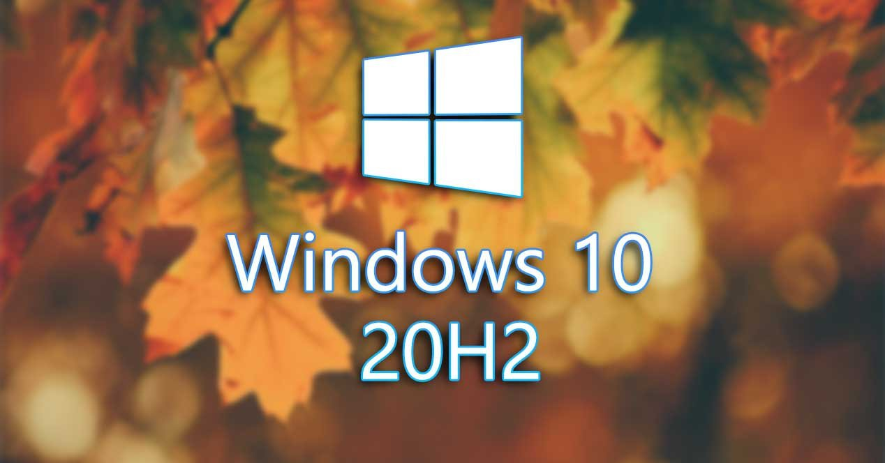 windows, microsoft, windows 10, windows 10 20h1, windows 10 20h2, windows 10 20H2 packet, windows 10 20H2 Insider