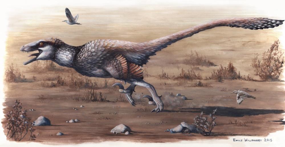 66 milyon yaşı olan nəhəng yırtıcı quş fosili tapıldı