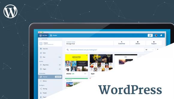 WordPress-in yeni, 4.6 Pepper versiyası nə ilə fərqlənir? Nə kimi yeniliklər var?