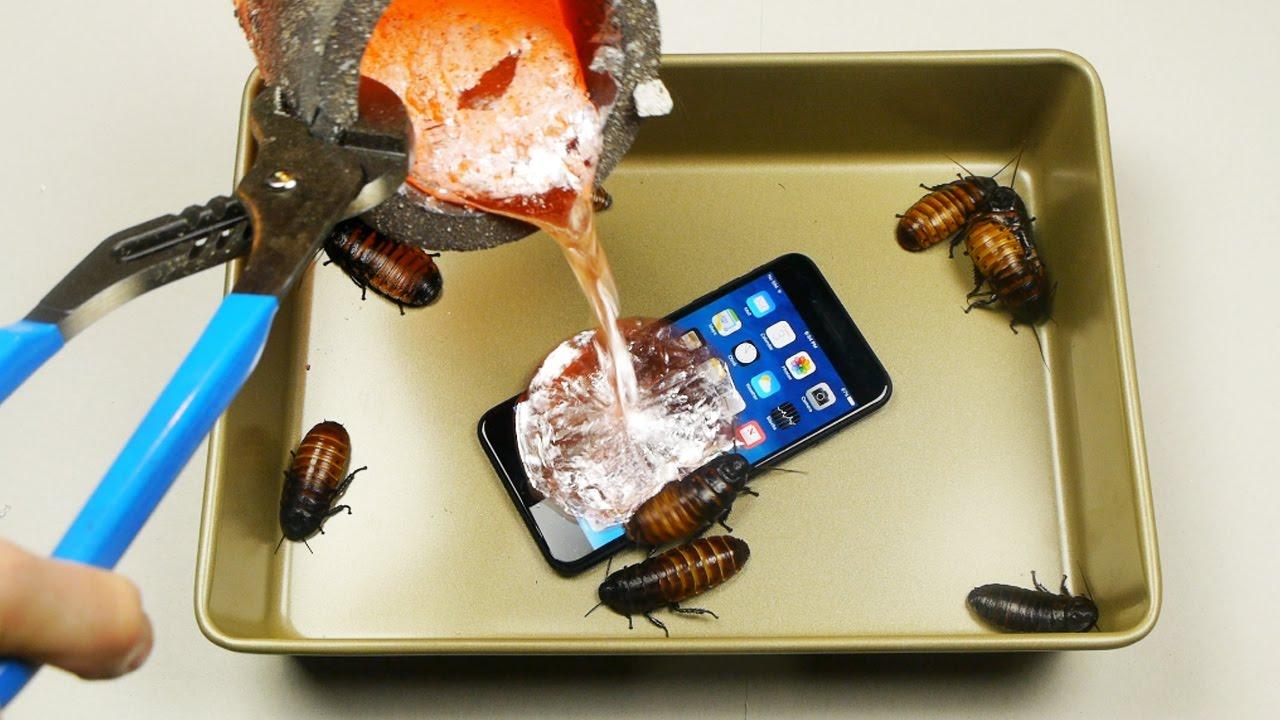 iPhone 7 Plus ilə tarakanların olduğu qaba əridilmiş alüminium tökərək test keçirtdi (VİDEO)